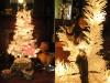 christmastreesplit.jpg